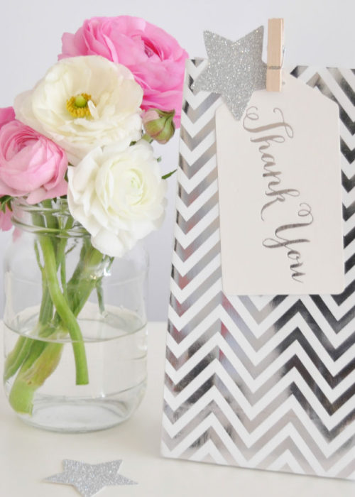 chevron-silver-bag-and-tag NW