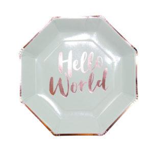 Papptallerken Hello World