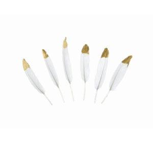 Dekorative hvite fjærer med gulltupp