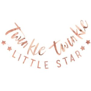 Twinkle Twinkle Little Star Bunting