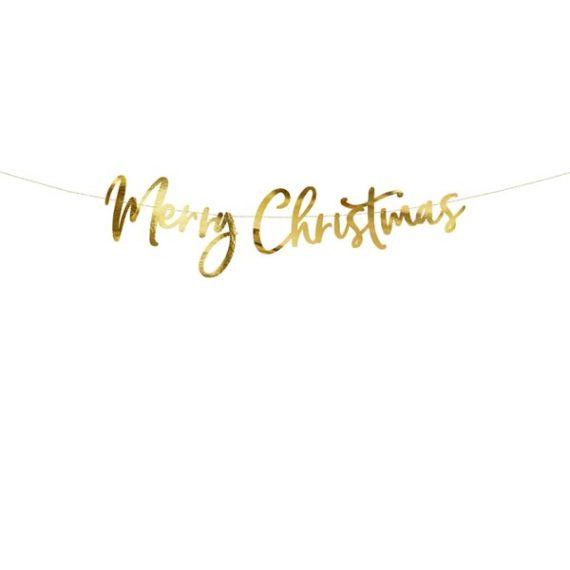 Merry Christmas Banner Gull